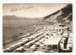 CT--02785-- SALUTI DA CHIAVARI - (GENOVA) SPIAGGIA DI PONENTE- VIAGGIATA 1951-OMBRELLONI - Italia