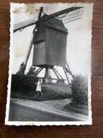 Oude Foto Gewezen VINKEMOLEN  Vroeger In OOSTERZELE  O  .  Vl . - Objets