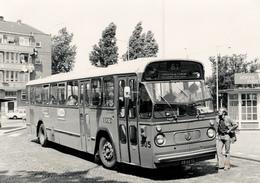 Bus, Omnibus, Leyland/ Hainje, RET Rotterdam,Hoogvliet Public Transport 1964, Real Photo - Auto's