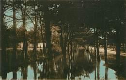 Dép 17 - Chatelaillon Plage - Le Boulevard De Kronstadt Inondé Par Le Raz De Marée De Janvier 1924 - état - Châtelaillon-Plage
