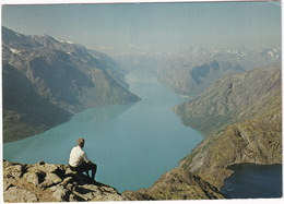 Jotunheimen. Parti Fra Besseggen 1500 M.o.h. Mot Gjendevath  - (Norge - Norway) - Noorwegen