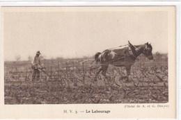 Le Labourage - Vignes