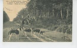 CHASSE A COURRE - LES BORDES (LOIRET ) - Chasses à Courre En Forêt D' ORLÉANS - L'Attaque - Chiens Mis à La Voie - Chasse