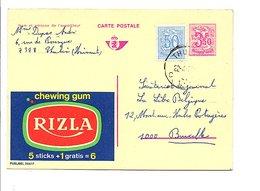 BELGIQUE PUBLIBEL CHEWING GUM RIZLA OBLITERE N°2557 F. - Publibels