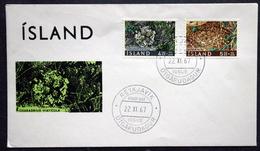 Iceland 1967  BIRDS  Minr.413-14   FDC     (2005 ) - FDC