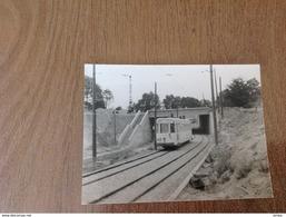 Photo Tram Gros Tilleul - Non Classés