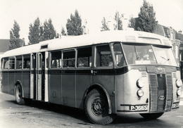 Bus, Omnibus, Crosley- Werkspoor, LTM 1247,1947, Public Transport, Real Photo - Auto's