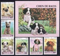 Benin 1998 - Dogs Chien De Races - Stamps CTO - G103 - Unclassified