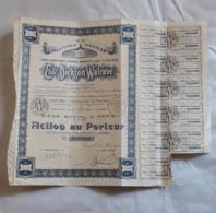 Action, Titre Au Porteur De 250 Francs Établissement Dickson Walrave. Filatures Tissages - Industrie