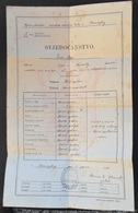 SVJEDOCANSTVO SVJEDODZBA SCHOOL REPORTS, 1920 KOZLUK NARODNA OSNOVNA SKOLA, KINGDOM SHS, KINGDOM OF YUGOSLAVIA - Diploma & School Reports