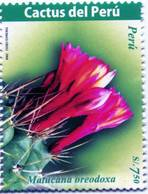 Lote P2008b, Peru, 2008, Sello, Stamp, 3 V, Cactus, Flower - Perú