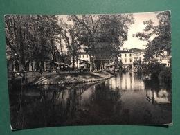 Cartolina Treviso - Pescheria - 1955 - Treviso