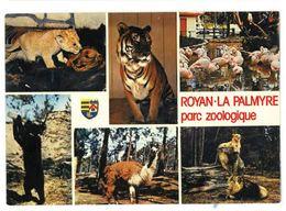 CP Parc Zoologique De Royan La Palmyre (17) - Royan
