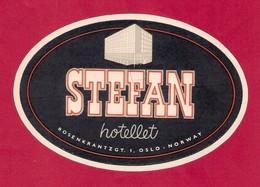 Etiquette HOTEL STEFAN à Oslo.  Norvège.   Luggage Label. - Hotel Labels