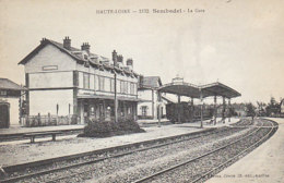 Haute Loire Sembadel La Gare (LOT A22) - Gares - Avec Trains