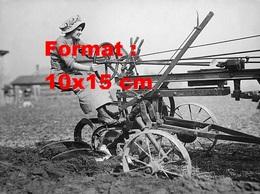 Reproduction D'une Photographie Ancienne D'une Femme Conduisant Une Charrue Dans Un Champ En 1925 - Reproductions