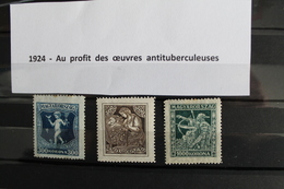1924     -  AU  PROFIT  DES  OEUVRES  ANTITUBERCULEUSES    OBLITERES - Hongrie