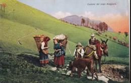 AR09 Costumi Del Lago Magiore - Farmworkers With Calf And Donkey - Verbania