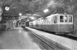TRAIN ( Suisse / Berne BE ) Chemin De Fer De La JUNGFRAU ( Train Express ) CPSM PF - Zug Trenes Bahn Trein Treni Trenes - Trains