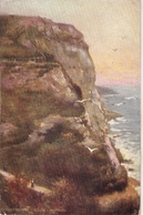 """""""""""Clearmoith Cliff. Hastings Tuck Oilette PC #   7138 - Tuck, Raphael"""
