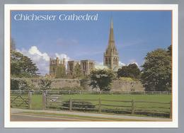 UK.- SUSSEX. CHICHESTER CATHEDRAL. - Chichester