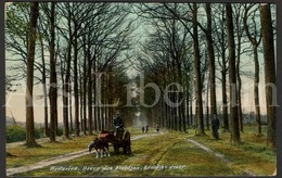Postkaart / Postcard / Westerlo / Westerloo / 1909 / 2 Scans / Westerloo-Villégiature / Beeldjes Dreef - Westerlo