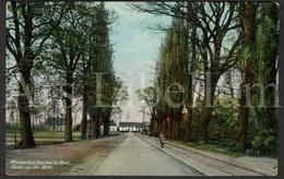 Postkaart / Postcard / Westerlo / Westerloo / 1909 / 2 Scans / Westerloo-Villégiature / Zicht Op De Bist - Westerlo