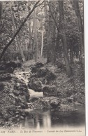 Cp , 75 , PARIS , Le Bois De Vincennes, Cascade Du Lac Daumesnil - Parks, Gardens