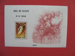 Bloc Feuillet    Belgique 1956  Bois Du Cazier - Blocs 1924-1960