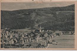 NEUSTADT  SCHWARZWALD - Neustadt (Weinstr.)