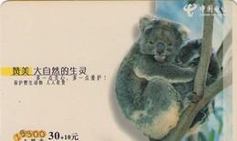 TARJETA TELEFONICA DE CHINA. KOALA. GXDCBLZ-2003-1(8-1). (668). - Tarjetas Telefónicas