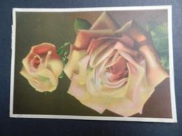 19884) ROSE VIAGGIATA 1938  INSOLITA AFFRANCATURA - Fiori