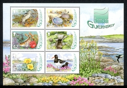 Guernsey MiNr. Block 43 Postfrisch MNH Naturschutz (P2754 - Guernsey