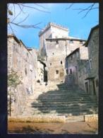 TOSCANA -LATINA -SERMONETA -F.G. LOTTO N°451 - Latina