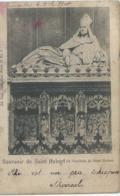 Saint-Hubert - Souvenir De Saint Hubert - Le Tombeau De Saint Hubert - Ed. Nels Série 32 No 3 - Saint-Hubert