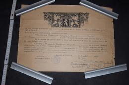 Diplôme Section Gréco - Latine Belgique Etterbeek 1947 41cm X 29.5cm Blason - Diploma & School Reports