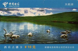 TARJETA TELEFONICA DE CHINA. CISNES - SWANS. (682). - Pájaros