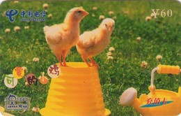 TARJETA TELEFONICA DE CHINA. AVES - BIRDS. JDZ-270-J17(2-2). (636). - Pájaros