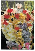 BALI - Flower Of Bali - Ed. K. SUJANA N° P-228 - Indonesia