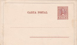 ENTERO POSTAL ENTIER UNUSED 2 CENTAVOS UNCIRCULATED SIN CIRCULACION CIRCA 1900s - BLEUP - Entiers Postaux