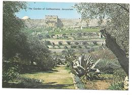 The Garden Of Gethsemane, JERUSALEM - I. Amad N° 20 - Israel