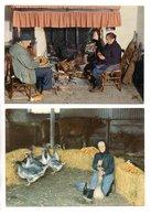 """DANS NOS CAMPAGNES . """" LA GAVEUSE D'OIE """" & LA VEILLÉE AU COIN DU FEU """" . 2 CARTES POSTALES - Réf. N°20264 - - Agriculture"""