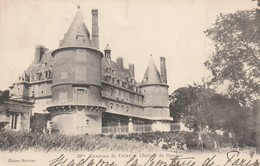 Rare Cpa  Le Château De Randan Dans Les Environs De Vichy - Vichy