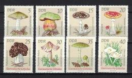 DDR 1974, Pilze Paddestoel Fungus Mushroom Champignon Seta Fungo **, MNH - Pilze