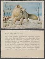Arctic Fox / Hungary 1960's Offset PRESS - Poster LABEL CINDERELLA VIGNETTE - Perros