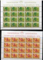 "LIECHTENSTEIN AÑO 1975 SERIE IVERT 578/581,  PLIEGOS  "" JUEGOS OLÍMPICOS INNSBRUCK ""   MNH. - Liechtenstein"