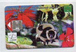 25 UNITES - TELECOM MALAGASY Vous Fait Decouvrir Notre Ile ... - Madagascar