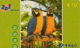 TARJETA TELEFONICA DE CHINA (FAUNA), PARROTS - LOROS, TWO PARROTS. CQ-2002-34(4-1). (630) - Loros