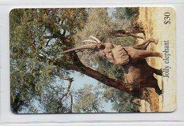 JOLLY ELEPHANT - Zimbabwe