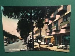 Cartolina Cattolica - Viale Balneare - 1956 - Rimini
